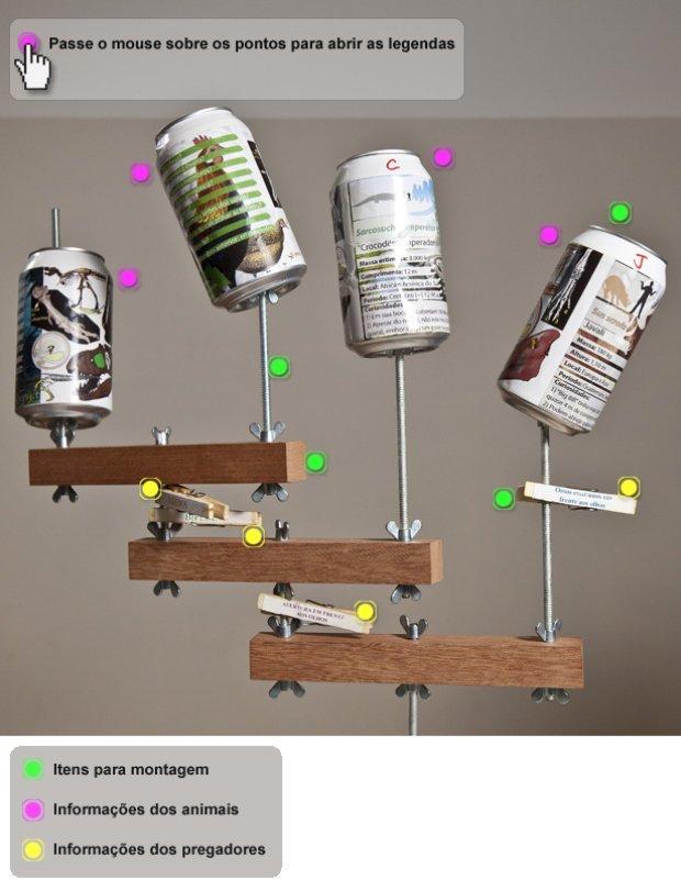 Confira todos os itens utilizados em sala de aula para criação do cladograma