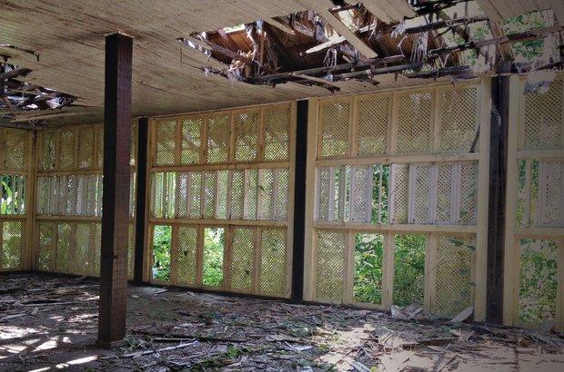 A floresta tomou de volta a estrutura do Hotel Escola Bosque, nunca inaugurado. Fernanda Salla