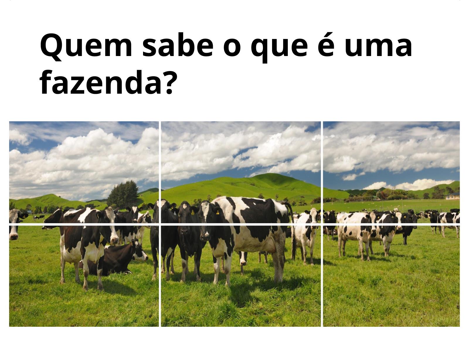 O Vaqueiro