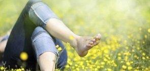 Descansando em meio ao gramado florido