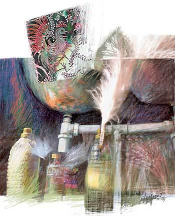 Ilustração Ana Raquel
