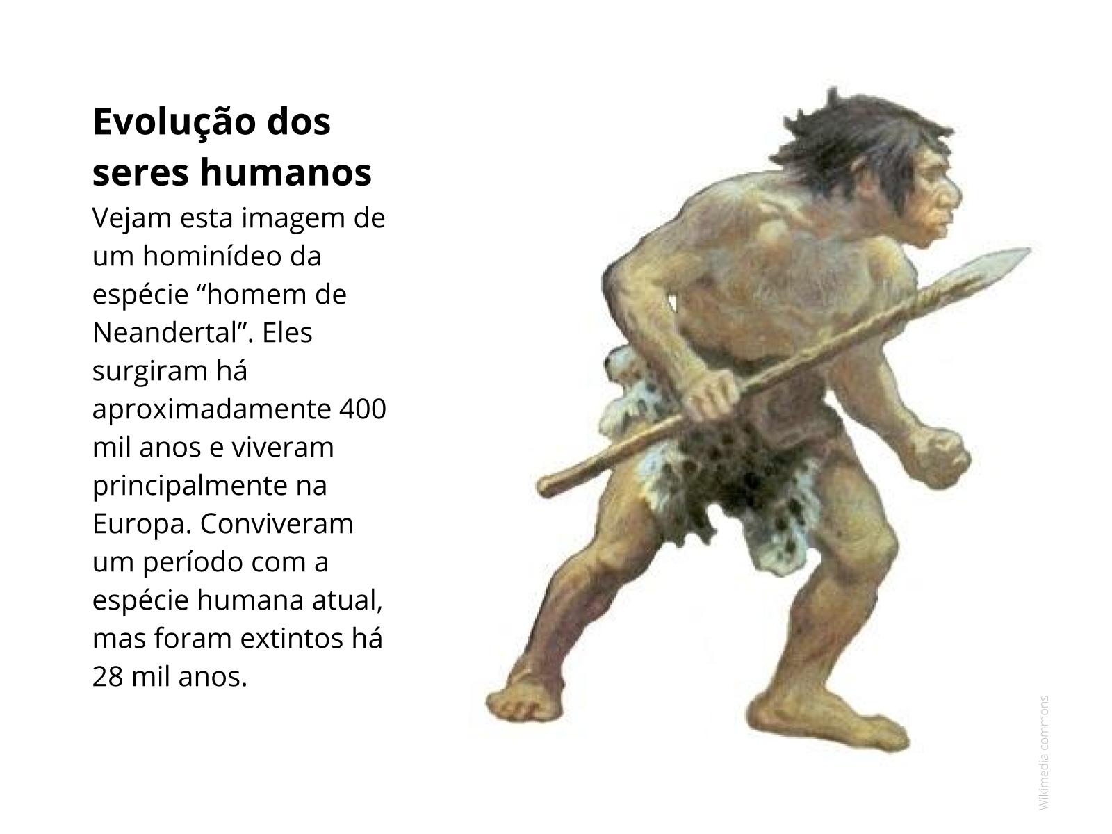 Fósseis e evolução dos seres vivos