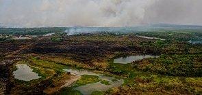 Pantanal: Materiais para entender as queimadas e abordá-las em três disciplinas