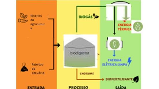 Uso da biomassa como fonte de energia