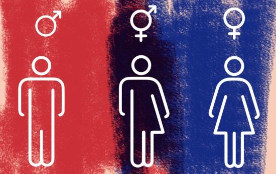 """Retirada dos termos """"gênero"""" e """"orientação sexual"""" da Base é criticada na ONU"""