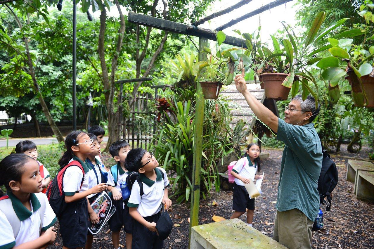Estudantes de Singapura em uma aula ao ar livre