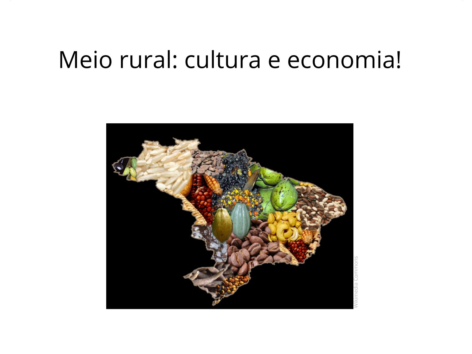 Meio rural: cultura e economia