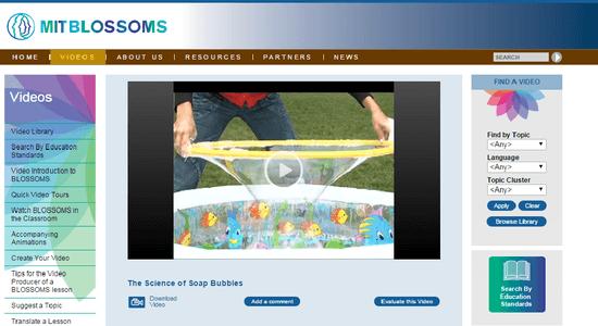 Reprodução de página do projeto BLOSSOMSs
