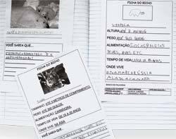 LER E ESCREVER Fichas escritas por aluno mostram a evolução na alfabetização (à frente, o texto mais recente). Fotos: Marcos Rosa