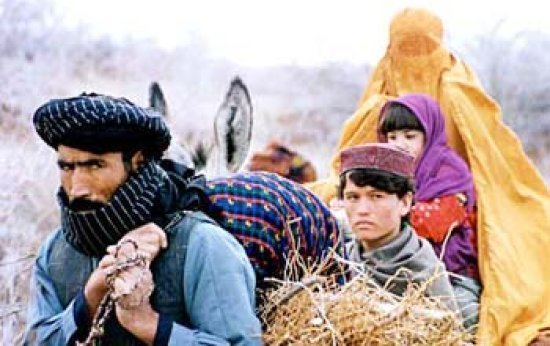 O que é o Talibã?