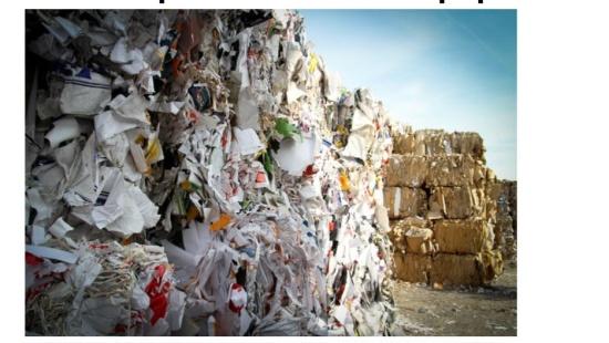 Benefícios da reciclagem do papel