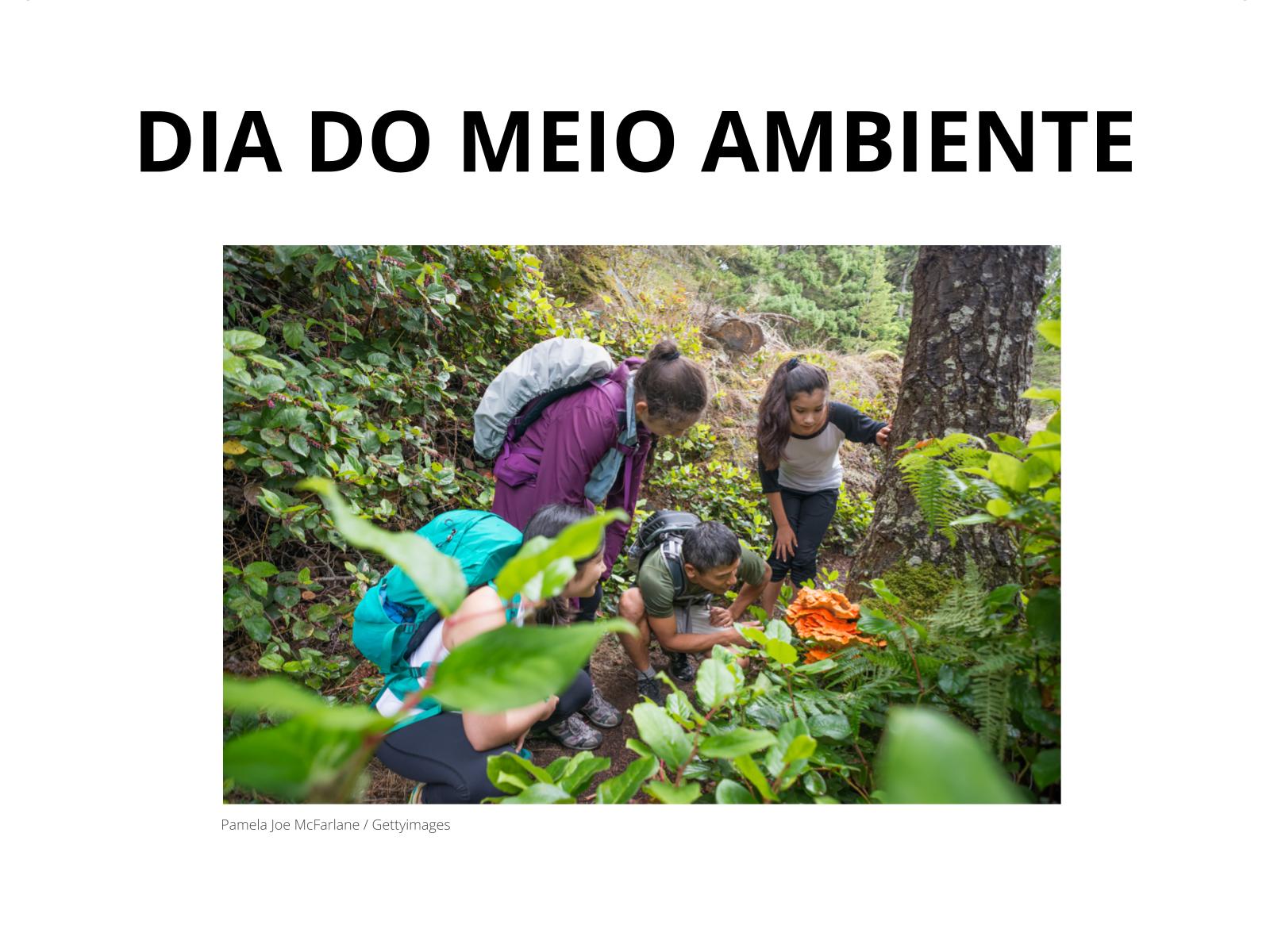 Dia do Meio Ambiente (05/06)