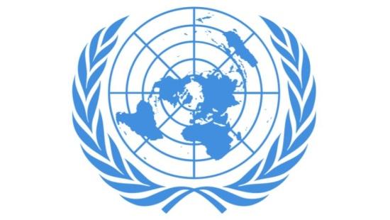O papel da ONU
