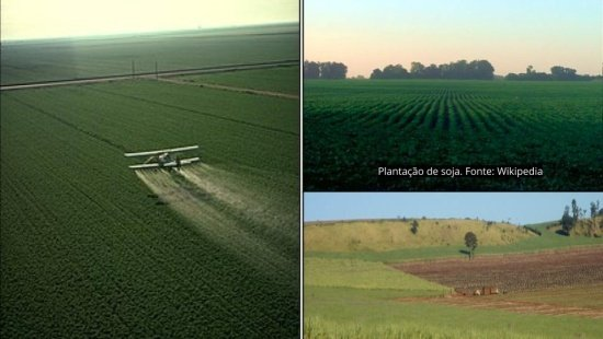 Impactos ambientais da agropecuária