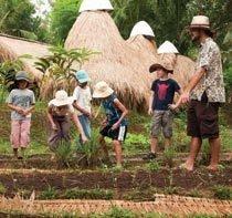 Aulas sobre ecologia se somam às de outras disciplinas. Foto: Carol da Riva