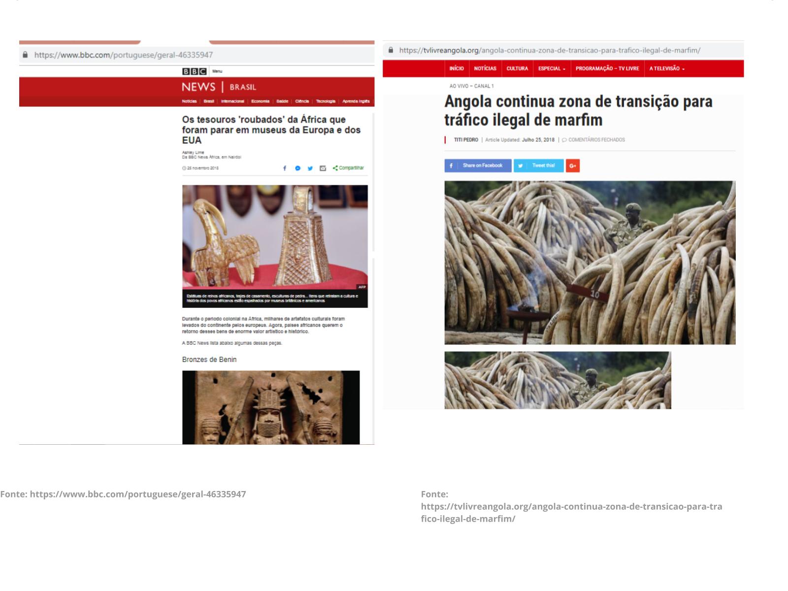 """""""O que tiraram de nós"""": exploração imperialista europeia sobre o marfim africano"""