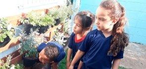 Foto das crianças explorando o jardim sensorial da escola