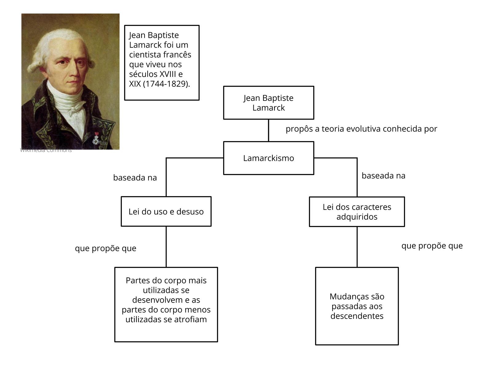 Ideias evolutivas: Lamarck