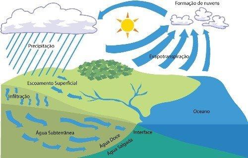 Ciclo das águas - Ilustração: Robbles/Pingado