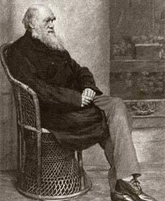 Retrato de Charles Darwin: teoria da evolução das espécies influenciou Claparède e toda uma geração de cientistas. Foto: Hulton Archive/Getty Images
