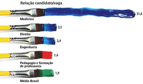 Fonte: Censo da Educação Superior 2009.