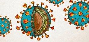 Ilustração para o conteúdo 2 para a Caixa Especial Coronavírus