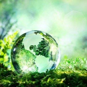 Blog Sustentabilidade na Escola