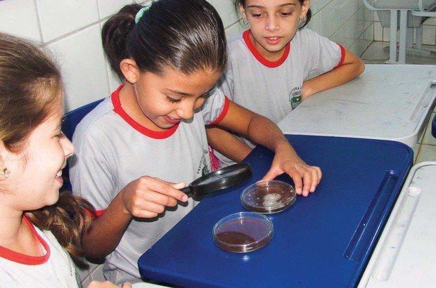 Durante a visita de um bioquímico à escola, a classe analisou várias lâminas com sangue. Arquivo pessoal/Anelise Torres Valle