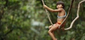 Criança Yanomami brinca em árvores