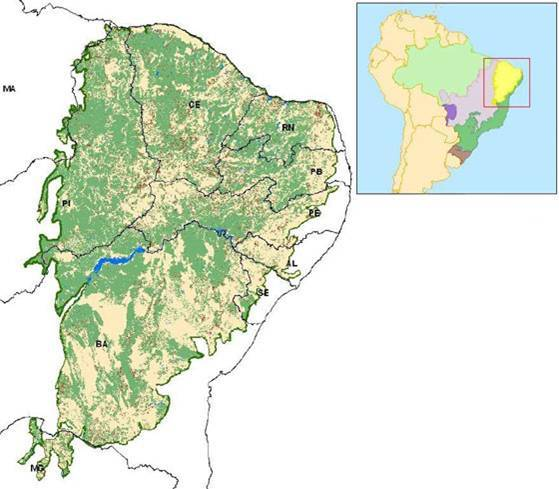 Mapa - Distribuição do desmatamento da caatinga. Fonte: Ibama. Ministério do Meio Ambiente.