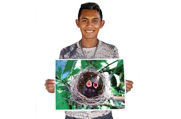 O ninho de pássaros chamou a atenção de Adriano, que retratou a riqueza do ambiente. Janduari Simões e arquivo pessoal/José Luiz Tavares da Silva