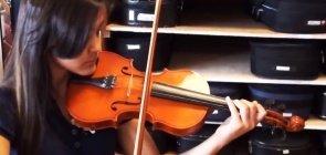 A orquestra sinfônica e seus instrumentos