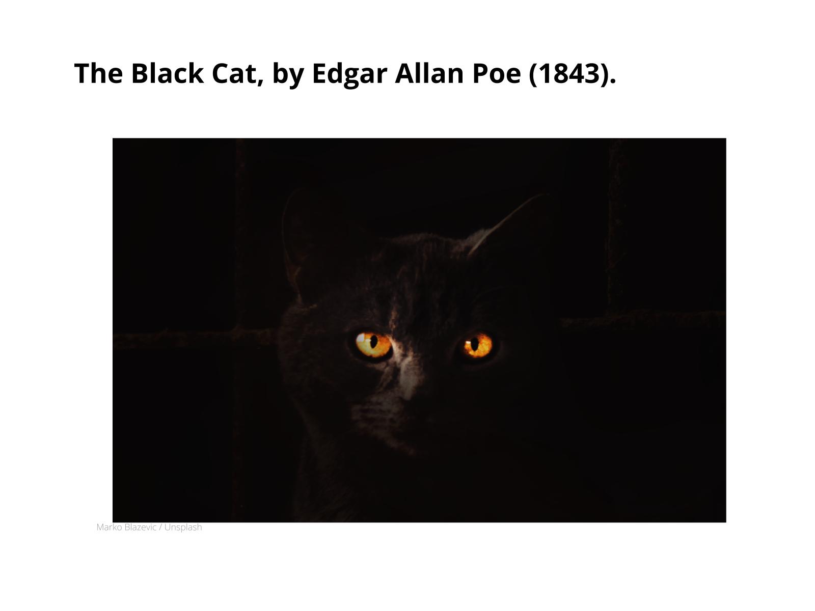 Contos - The Black Cat