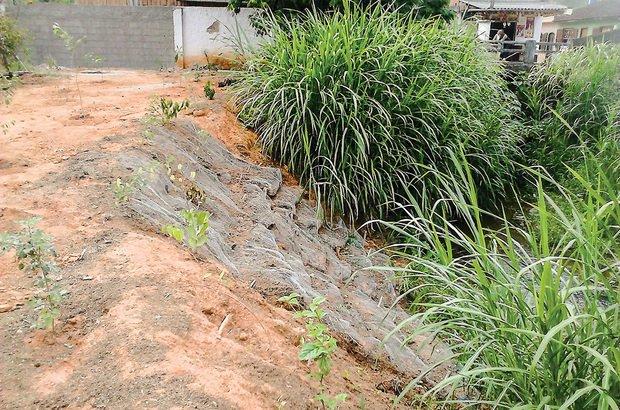 Para evitar a erosão nas margens, a turma adicionou terra extra e telas de proteção. Arquivo pessoal/Rafael Pereira Machado