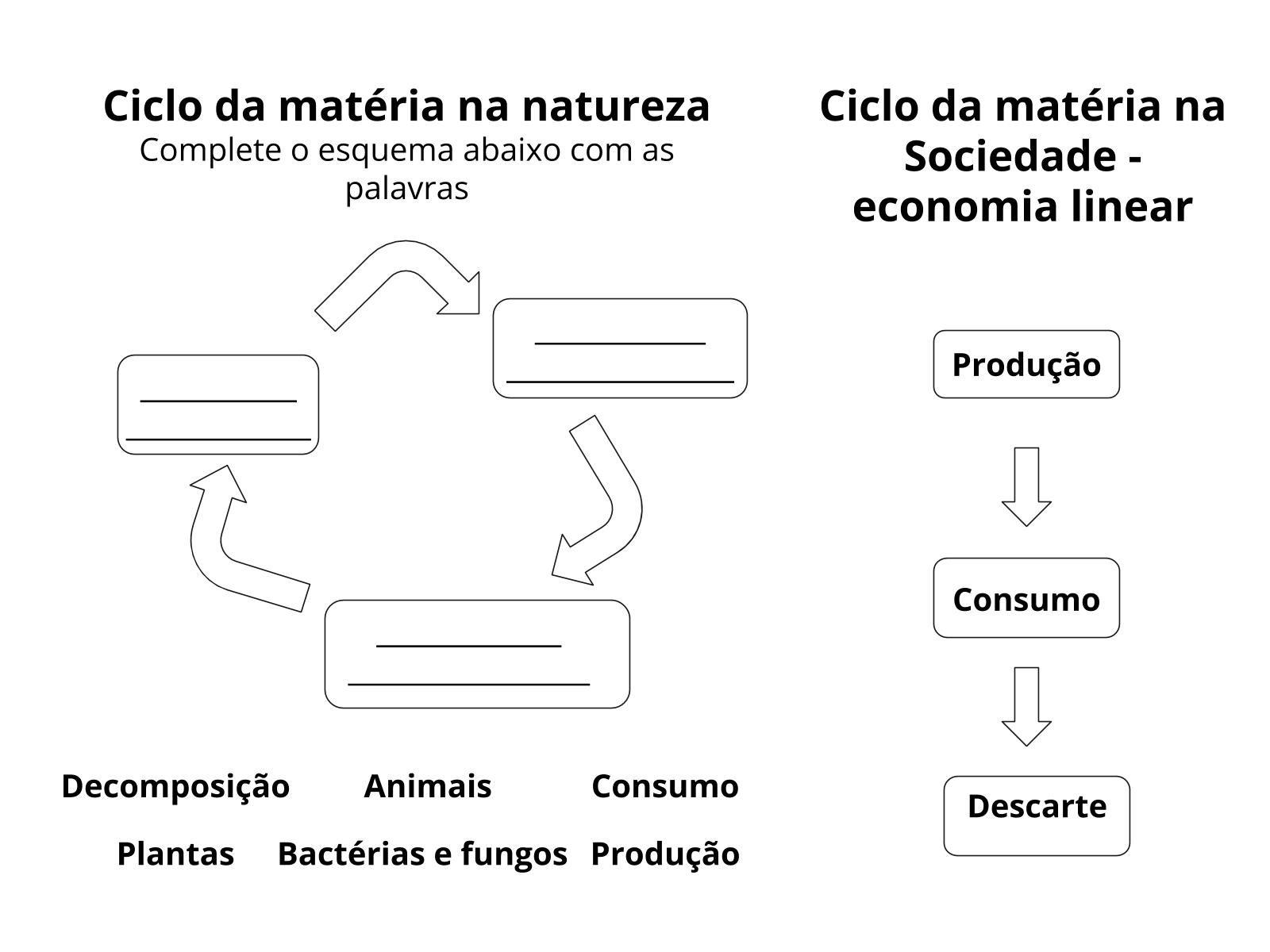 O ciclo da matéria na natureza
