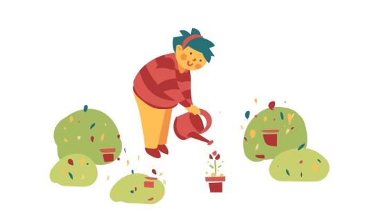 Percepção de cuidados das plantas do entorno