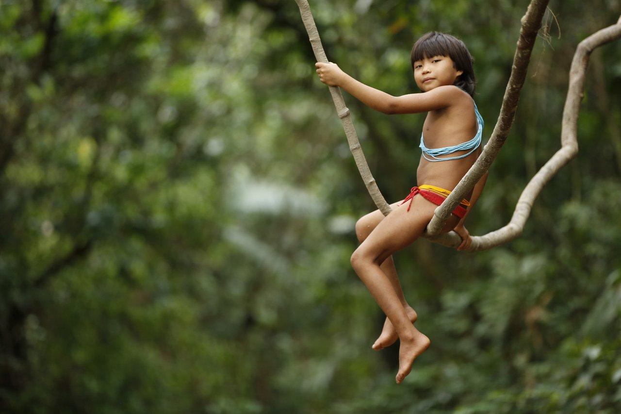 Criança Yanomami brinca entre cipós em meio à floreta e olha para a câmera