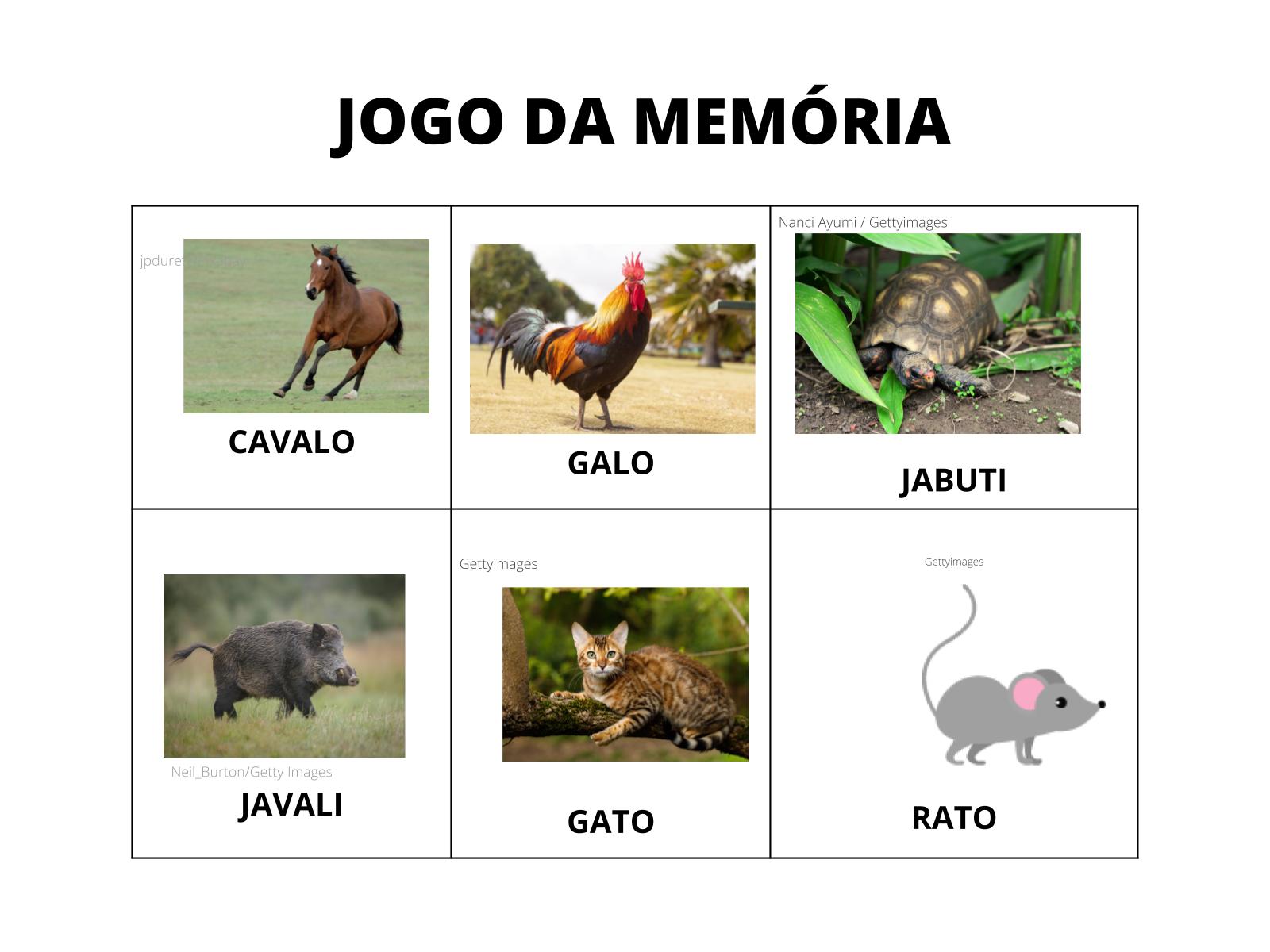 Animais que rimam - Jogo da memória