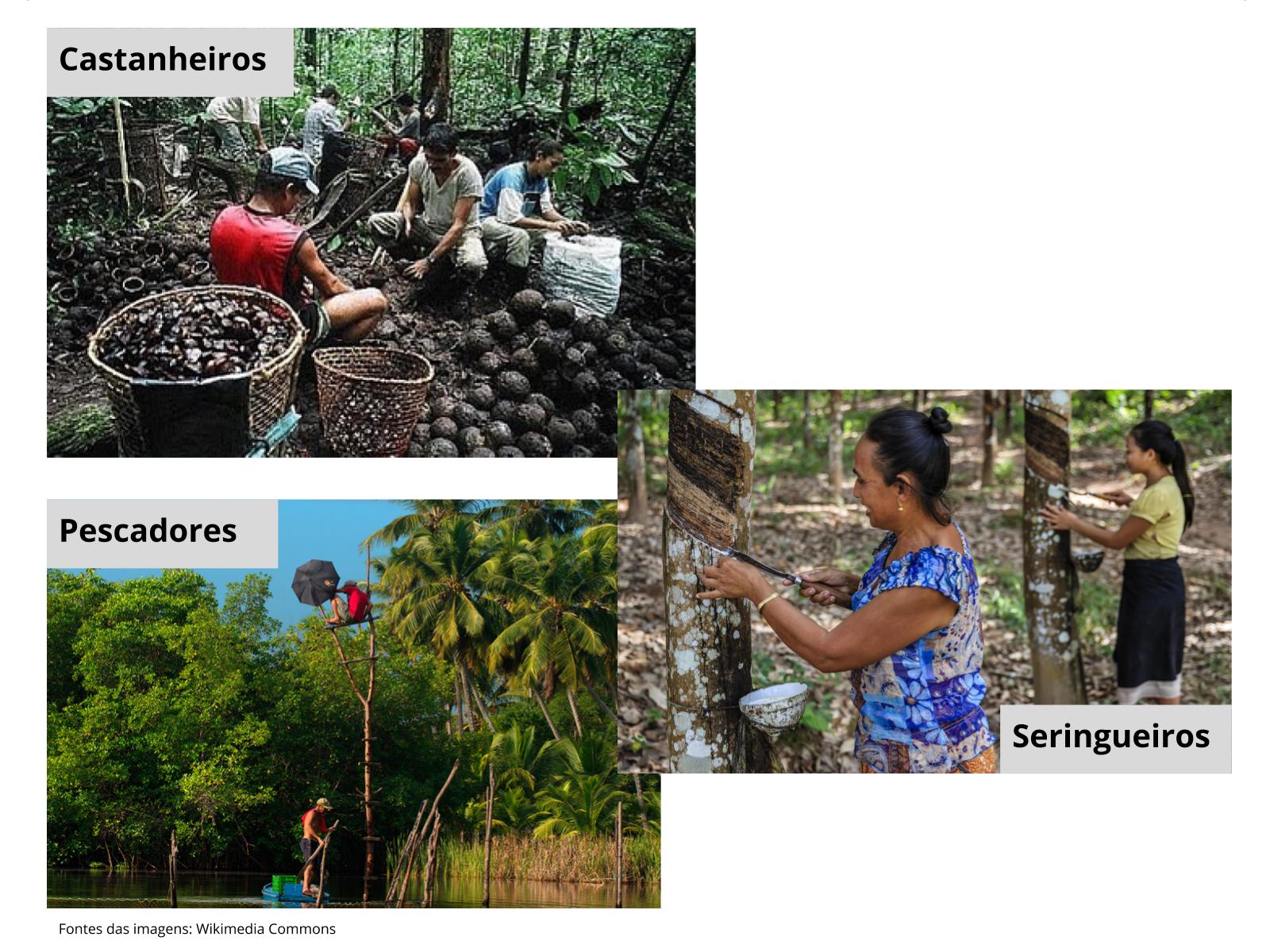As comunidades da Amazônia e as relações estabelecidas em seu entorno