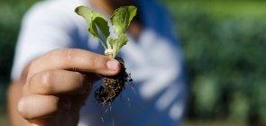Agricultura multidisciplinar
