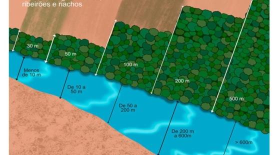 Área de Preservação Permanente (APP) e qualidade ambiental