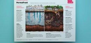 Infográfico: o que tem dentro do permafrost?