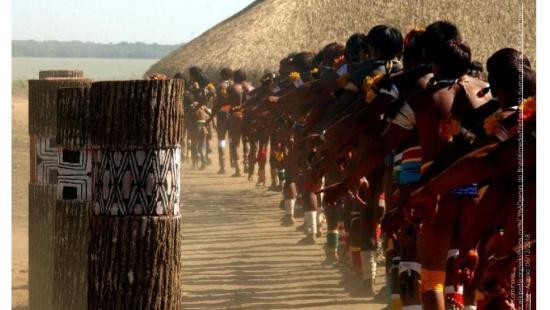 Onde estão localizados os povos indígenas no Brasil?