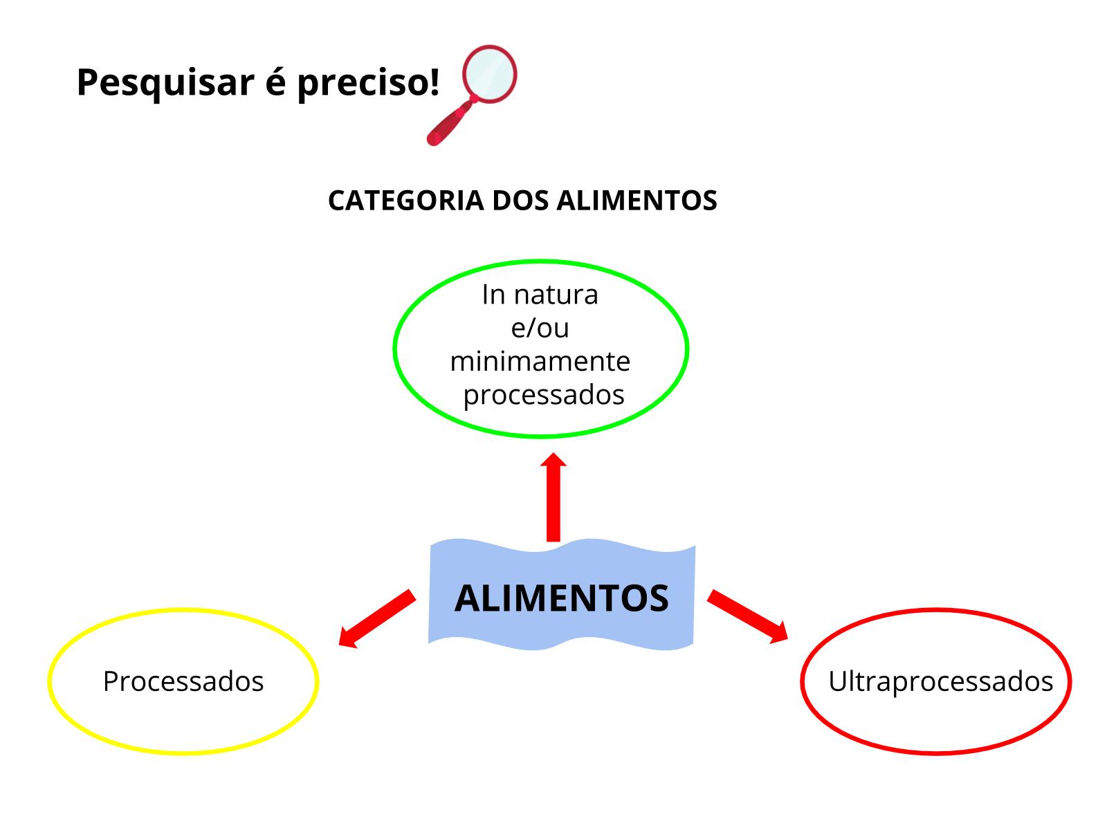 Alimentos processados x absorção dos nutrientes