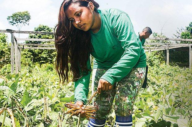 Técnicas Agrícolas integram o currículo de Julia, que quer permanecer no campo. Janduari Simões