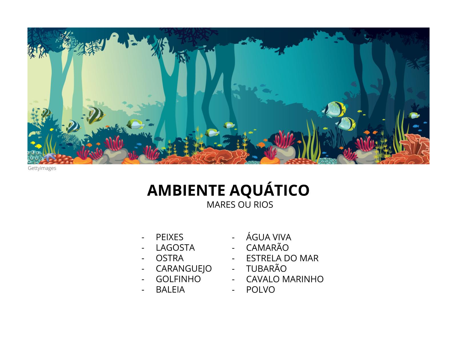 Animais aquáticos