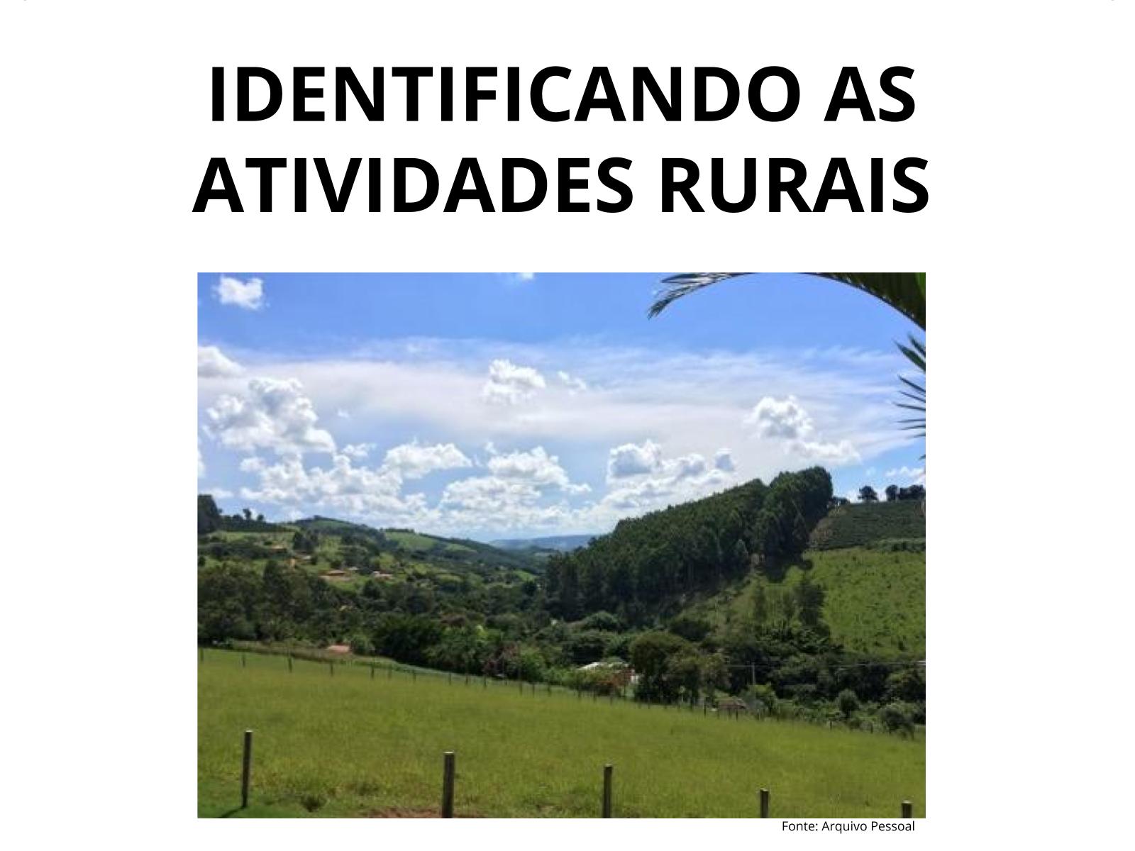 Produção rural e seus impactos