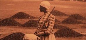 5 conteúdos para refletir sobre a escravidão com a turma