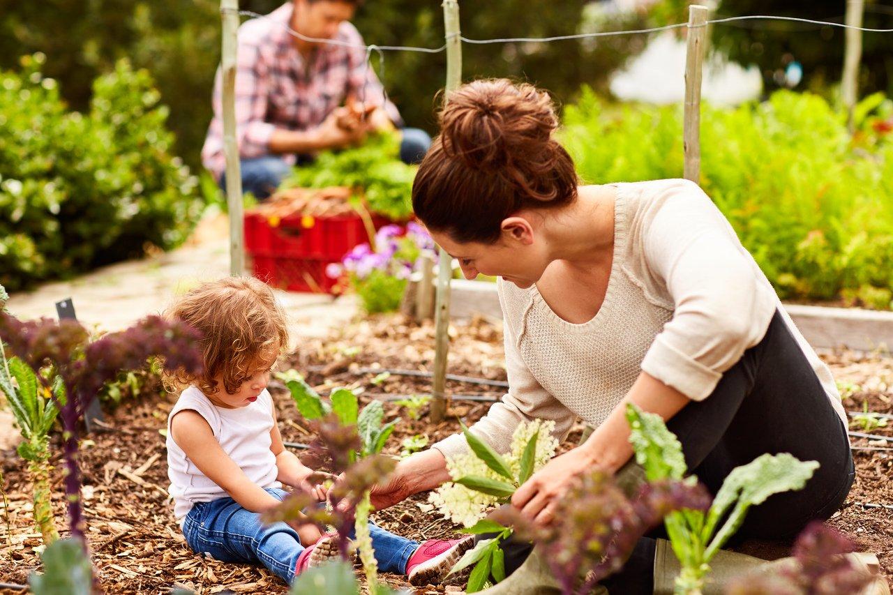 Uma bebê sentada na terra de uma horta, em meio a plantas e acompanhada de um adulto