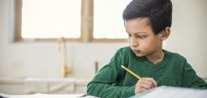 Leitura na escola: 20 planos de aula para trabalhar a distância